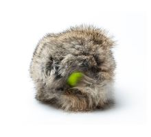 "Rabbit ""Cover"" with tennis ball"