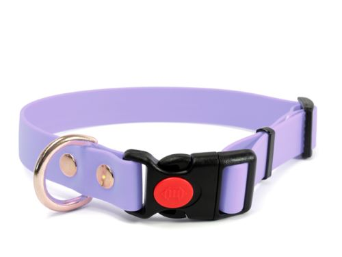 Biothane_collar_safety_click_solid_brass_pastel_purple_small_web