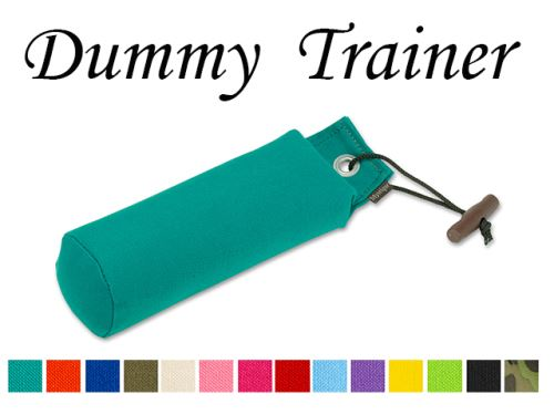 Neue Farben von Dummy Trainer