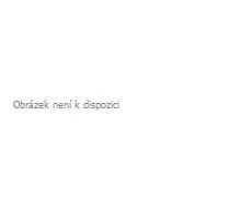 Mystique® Gummiertes Halsband mit Durchzugskette 25mm