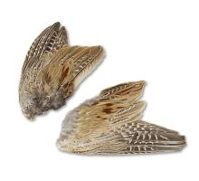 Pheasant wings 2pcs.