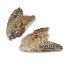 Pheasant wings 2pcs.