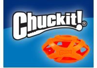Chuckit! again in our offer